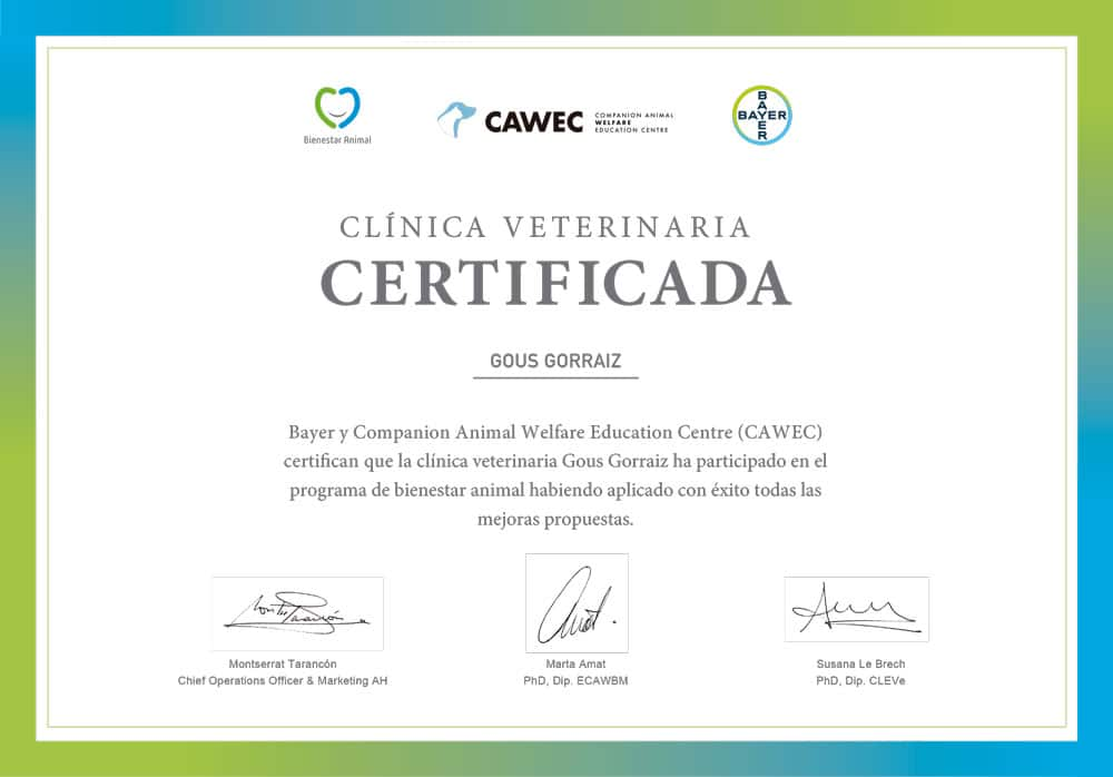 clinica veterinaria certificada pamplona