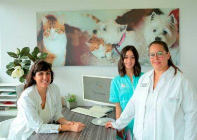 equipo veterinarios pamplona
