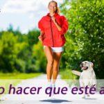 actividad-fisica-con-perro-clinica-veterinaria-gous