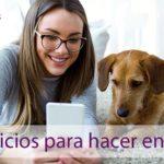 gous-veterinario-pamplona-ejercicios-para-hacer-en-casa