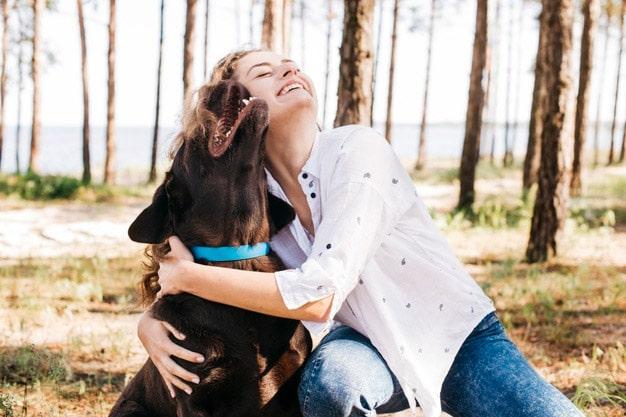 Tips para llevarte a tu mascota de vacaciones
