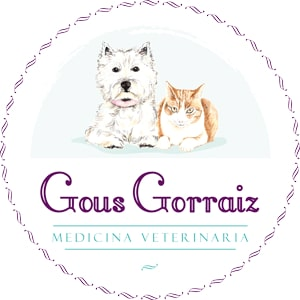 veterinario en pamplona